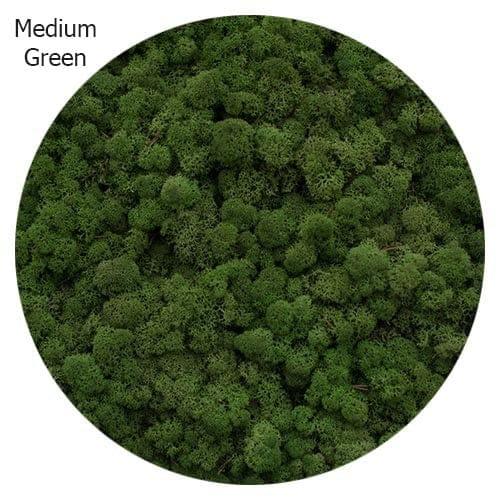 vert-moyen