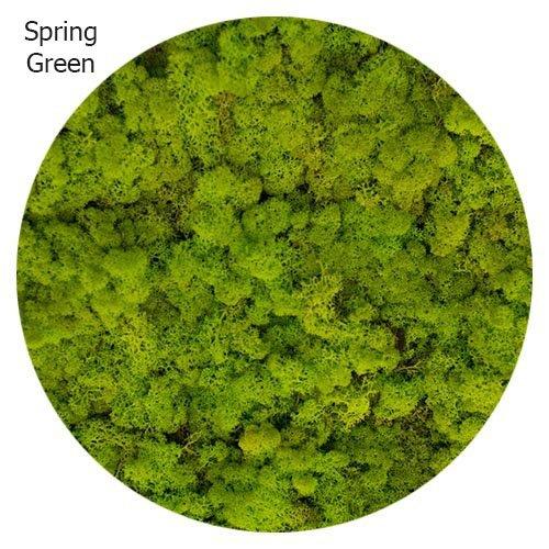vert-printanier